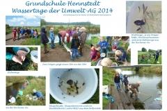 Poster der Umwelt-AG 2014